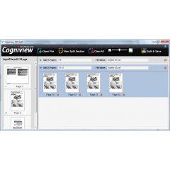 CogniView, Split PDF